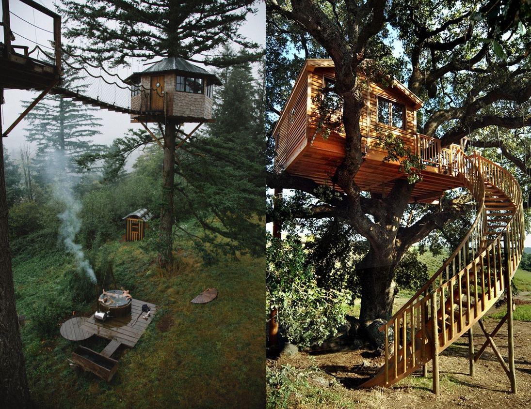 домик на дереве фото